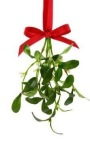 Mistletoe Tradition