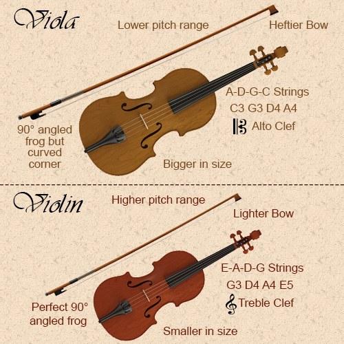 viola-vs-violin
